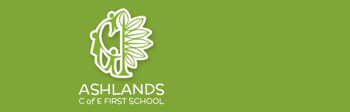 Ashlands Summer School Fair